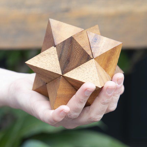 Star Interlock Puzzle